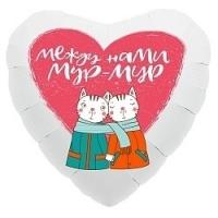 гелиевые шары стерлитамак заказать на 14 февраля на день валентина стерлитамак подарок сердце котики кошки стерлитамак шарики
