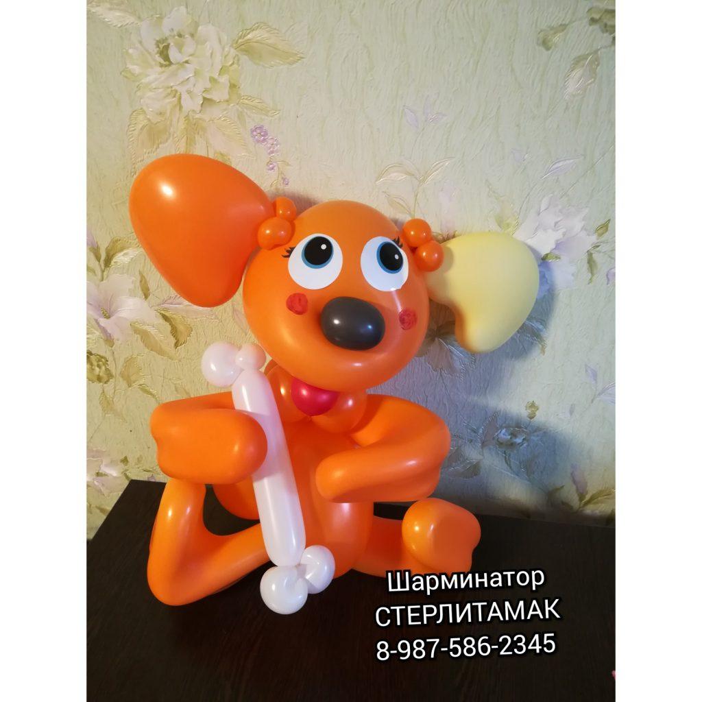 собака из шаров игрушка стерлитамак шары стерлитамак, воздушные шары стерлитамак, фигура из шаров, мальчик подарок стерлитамак сюрприз стерлитамак, подарки стерлитамак Шарминатор доставка шариков, гелиевые шары стерлитамак, гелевые шары стерлитамак, оформление шарами стерлитамак