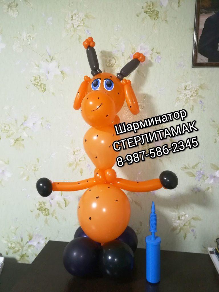 жирафик на заказ заказать медведя из шариков Стерлитамак фигура животные из шариков Стерлитамак шарминатор оформление подарки стерлитамак сюрприз стерлитамак подарок стерлитамак гелиевые шары с доставкой