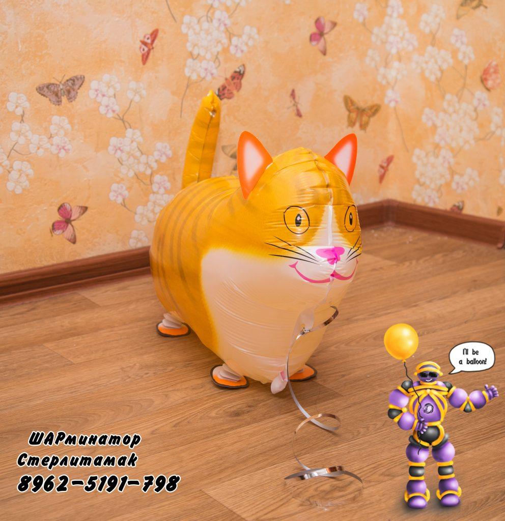 Кошка попрыгушка от ШАрминатора