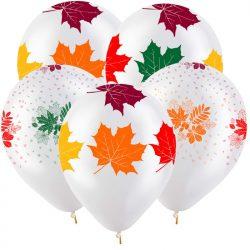 шары с 1 сентября в Стерлитамаке шары на День знаний Стерлитамак осенние шары
